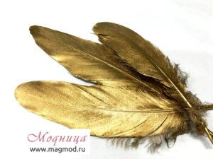 золотое и серебряное перо в магазинах Модница
